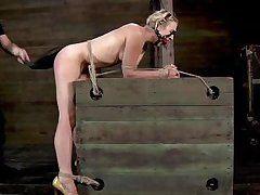nuts gagged blondie punished